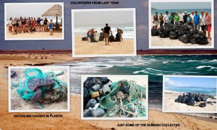 Sal: First Beach Clean – June 2010 – by Linda Aspden