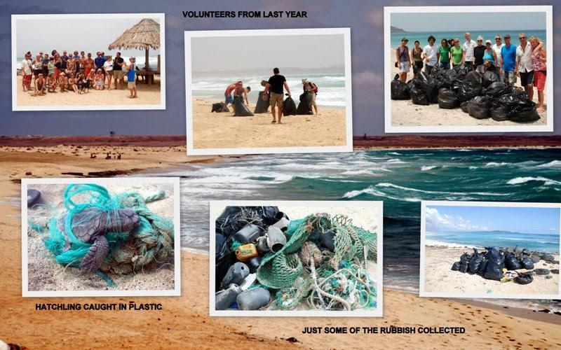 Sal: First Beach Clean – June 2010 – by Linda Aspden