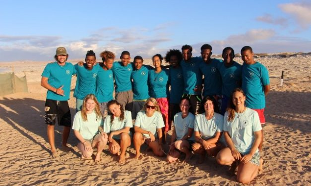 The Turtle Foundation on Boa Vista