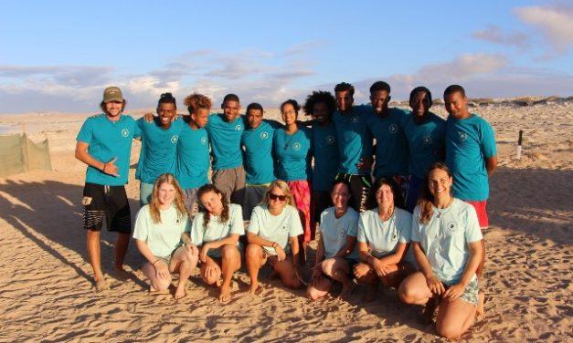 The Turtle Foundation on Boa Vista
